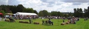 Country Fayre 2015