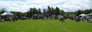 Country Fayre Header